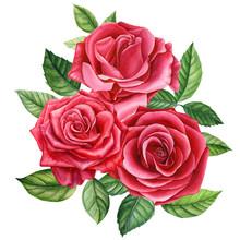 Bouquet Red Rose, Beautiful Fl...