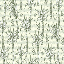 Hand Drawn Sugarcane Plants Vector Seamless Pattern. Sugar Cane Stalks With Leaves Endless Background