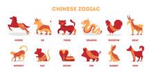 Traditional Chinese Zodiac Ani...