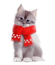 Fluffy Grey Kitten In Red Scar...