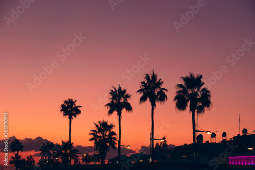 Poster Corail Silhouettes of palms at orange and violet sunset sky background on tropical resort embankment, copy space for text. Vacations and travel concept.