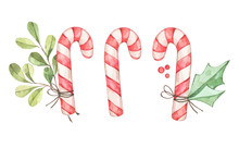 Christmas Candy Cane With Euca...