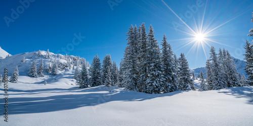 fototapeta na drzwi i meble Winterurlaub in den Bergen