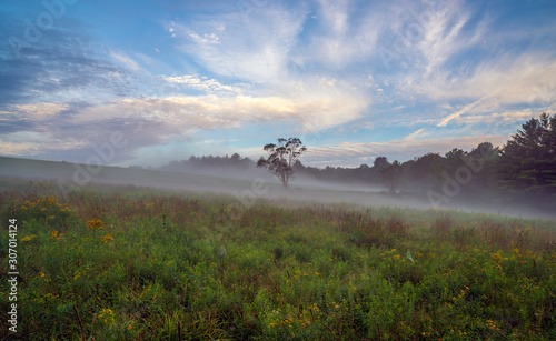 Fotografía Upstate New York in Sullivan county in summer with fog on the meadow