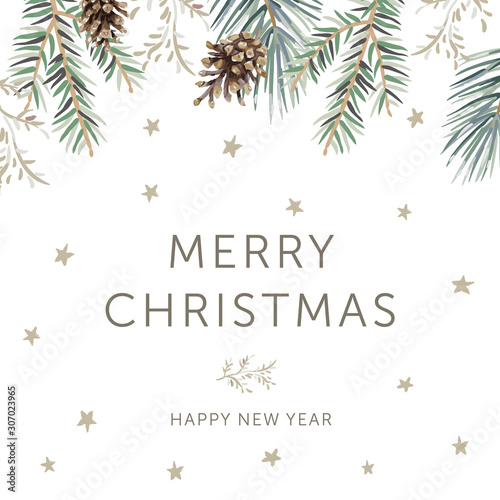 Winter forest nature design, text Merry Christmas, Happy New Year, white background. Green pine, fir twigs, cones, stars. Vector illustration. Greeting card, poster template. Xmas season holidays