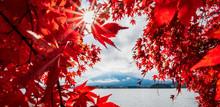 Landscape Mt.Fuji Autumn Seaso...