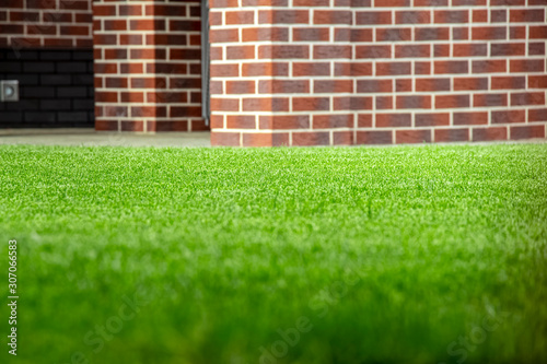 A neatly trimmed green lawn in the backyard of a private home. Fototapeta
