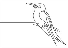 Continuous Line Bird.vector Il...