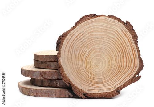 Obraz Cross section of tree trunks, stumps, isolated on white background - fototapety do salonu