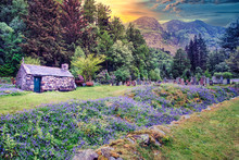 A Old Stone House And Bluebells Flower Near St John's Episcopal Church, Ballachulish In The Scottish Highlands Surrounded With Graves And Colorful Flowers. Sunset In The Background.