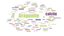Aragonite Word Cloud Animated ...