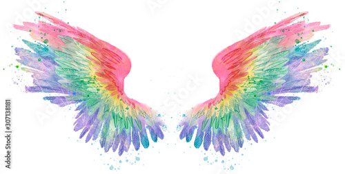 Rainbow watercolor spreaded wings, raster Canvas-taulu
