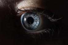 Closeup Of A Blue Eye In Dark