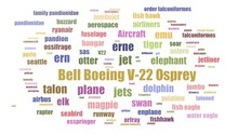Bell Boeing V 22 Osprey Word Cloud Animated On White Background