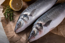 Fresh Branzini, European Sea B...