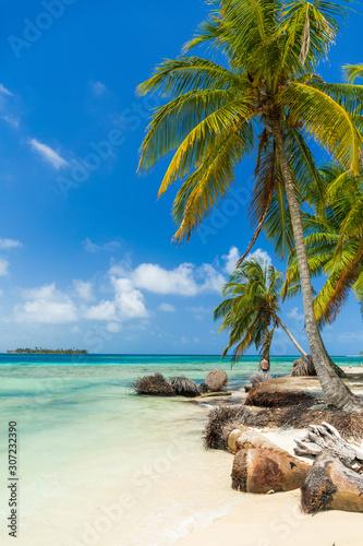 San Blas island beach Tablou Canvas