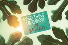 Word Writing Text Everything Is Good In Spring. Business Photo Showcasing Happiness For The Season Enjoy Nature