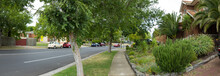Panoramic View Of Pedestrian W...
