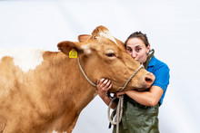 Young Woman Kissing Guernsey Cow