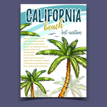 Tropical Palms Of California Beach Banner Vector. Best Vacation Phrase And Beautiful Tropic Green Leaves Trees Palms Depicted On Tourism Place Colorful Advertising Poster. Designed Flyer Illustration