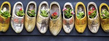 Panoramic Shot Of Beautiful Flowers In Clog Shoes On A Gray Surface