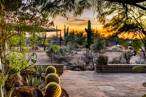 Arizona Patio at Sunset Wallpaper Mural