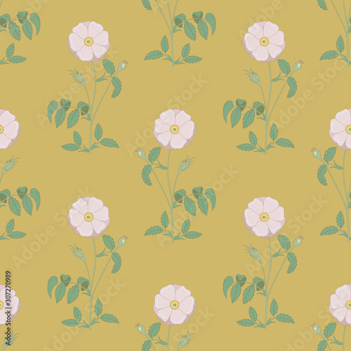 Seamless floral pattern with branches of wild rose. Vintage style.