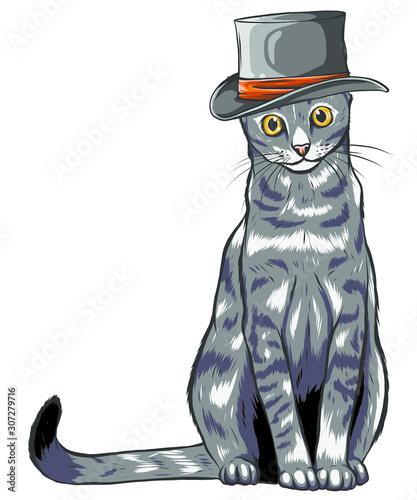 wektorowy-smieszny-brytyjski-kot-modnis-w-szarym-kapeluszu