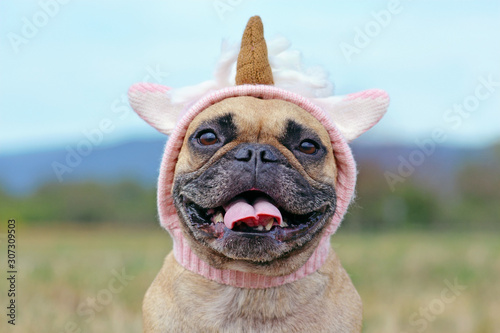 Portrait of happy smiling French Bulldog dog with wearing a funny knitted pink unicorn hat costume