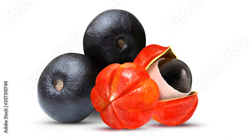 Acai and Guarana - Exotic Fruit Canvas Print