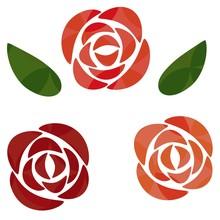 赤とピンクのバラの花...