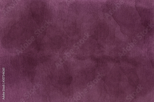 Fotografie, Obraz Winter lilac color on watercolor paper