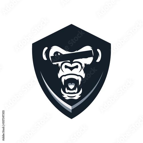 Photo  shield gorilla protection guard glass
