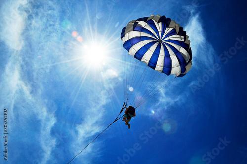 Fotografie, Obraz flying under the sun