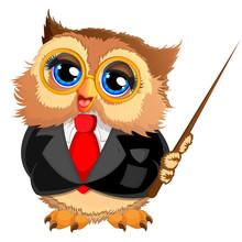 Beautiful Owl Teacher With A W...