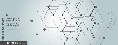 Vector network hexagon and connected cells background