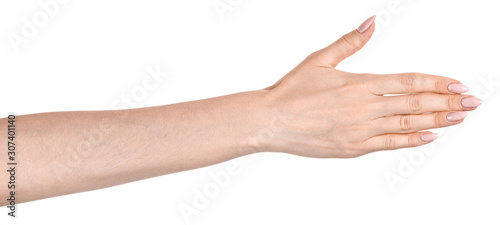 Obraz Female caucasian hands  isolated white background showing  various finger gestures. woman hands showing different gestures - fototapety do salonu