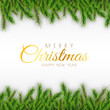 Merry Christmas background decorative design with pine branches