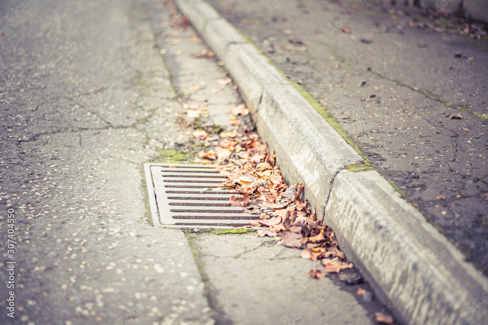 Fototapeta Flooding threat, fall leaves clogging a storm drain on a wet day, street and curb