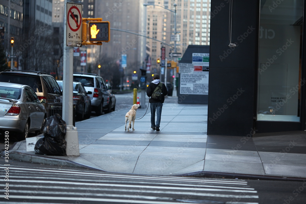 man and dog walking on New York sidewalk in winter