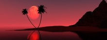 Moon Over Palm Trees, Night Beach With Palm Trees Under The Moon. 3d Rendering.