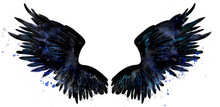 Beautiful Black Magic Raven Wings Watercolor Drawing