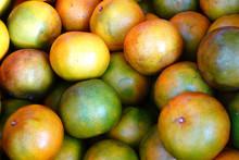 Honeysuckle Oranges Collected From The Garden.