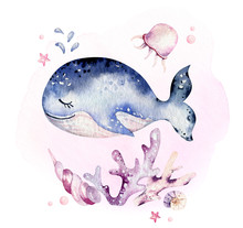 Set Of Sea Animals. Blue Watercolor Ocean Fish, Turtle, Whale And Coral. Shell Aquarium Background. Nautical Marine Hand Painted Illustration.