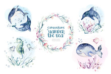 Set Of Sea Animals. Blue Watercolor Ocean Fish, Turtle, Whale And Coral. Shell Aquarium Background. Nautical Wildlife Dolphin Marine Illustration, Jellyfish, Starfish
