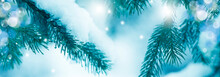 Christmas And New Year Holiday Background With Copy Space. Fir Branches In Snow And Festive Bokeh. Wallpaper, Banner.