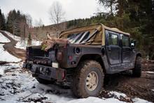 Dead Deer On Pick-up Truck