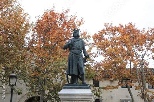 Fotomural Statue du roi de France Louis IX surnommé Saint Louis dans le village de Aigue