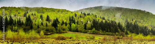 Foto auf AluDibond Pistazie panorama of the Carpathian mountains