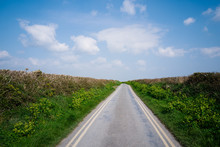 Country Lane On A Sunny Day, L...